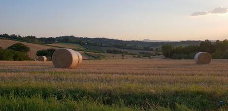 Fantastic summer rural inspirational landscape in Marche, an italian region Standard-Bild