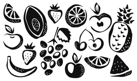 Collection of different fruits drawing vector illustration
