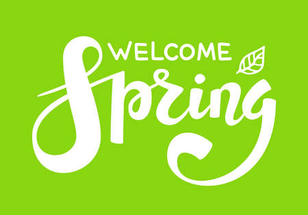 Hello Spring quote hand drawn calligraphy