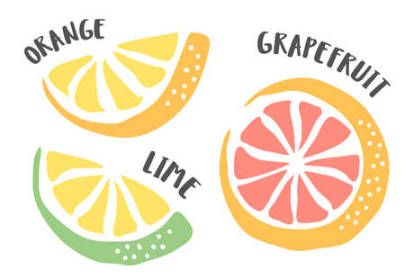 Lime, Grapefruit and Orange hand painted with ink brush