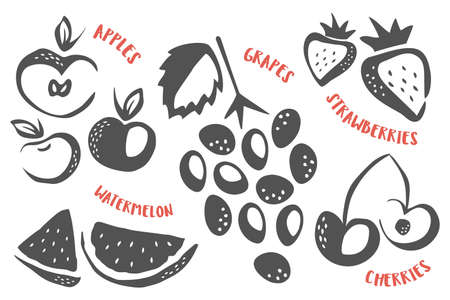 Grapes, apples, strawberries, cherries and watermelon hand painted with ink brush 矢量图像