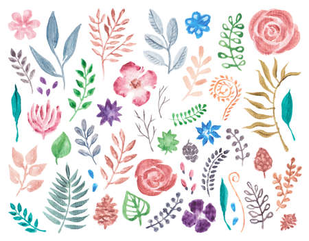 Watercolor flowers and foliage hand painted, isolated on white background Banque d'images