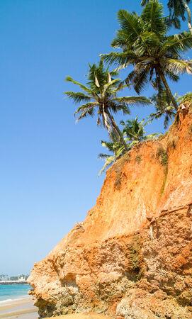 red bluff: Palms up the Arabian sea red bluff (Kerala, India)