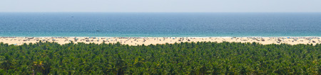 dreamscape: Sky, sea, sand and jungle tranquil panorama for relaxation (Kerala, India)