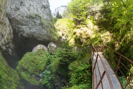 낙엽수와 상록수가 풍부한 숲 (Trigradskoto Zhdrelo, Bulgaria)이 많이 자란 Rhodope Mountains의 거대한 악마의 인후 동굴로 들어가는 (등반)