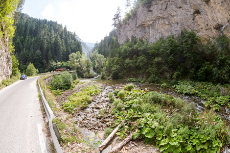 Narrow motor road along a mountain river in the gorge of the Rhodope Mountains, abundantly overgrown with deciduous and evergreen forest at sunny summer day (Bulgaria) Stock Photo