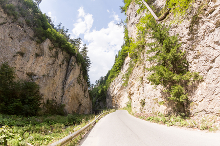 Narrow motor road along a mountain river in the gorge of the Rhodope Mountains, abundantly overgrown with deciduous and evergreen forest at sunny summer day (Trigradskoto Zhdrelo, Bulgaria)