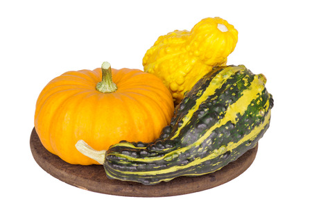 Colorful ornamental pumpkins and gourds isolated on white background.