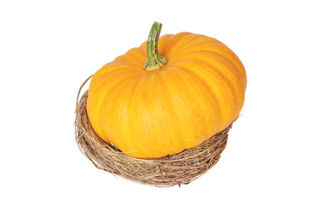 Decorative pumpkin in a basket  on  white background.