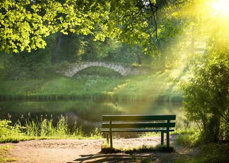 woods lake: Panchina sulla riva del fiume in estate giorno Archivio Fotografico