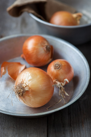 Farm onions on a rustic metallic plate,shallow depth of field