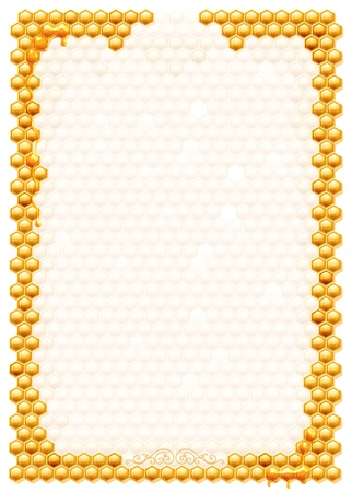 abejas panal: Marco con panales de abejas aislado en un fondo blanco Foto de archivo