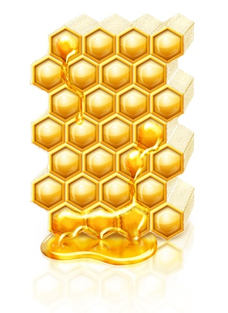 Bee honeycombs with honey flowing down photo