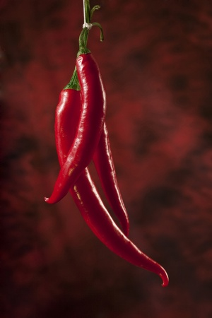 Red hot chili papers over dark red background photo