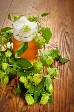 Pint and hop plant Stock Photo - 17387181