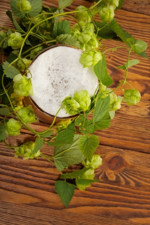 Pint and hop plant Stock Photo - 17387189
