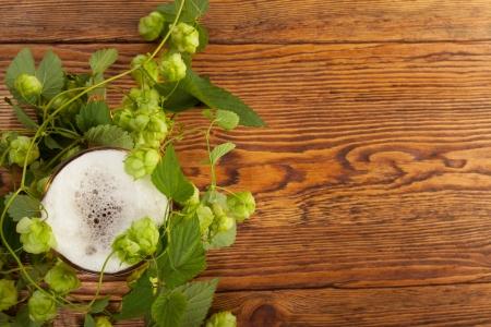 brew beer: Pinta y la planta del l�pulo