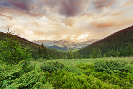 myst: Image of a beautiful carpathian mountains  Chornohora massif in eastern Carpathians