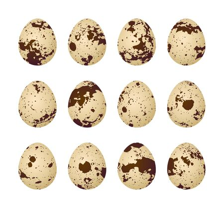 Quail eggs on a white background