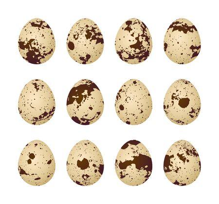Quail eggs on a white background Imagens - 96362489