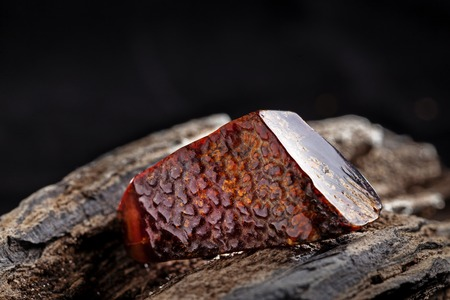 Natural amber. A piece of dark red semi transparent natural amber on piece of stoned wood.