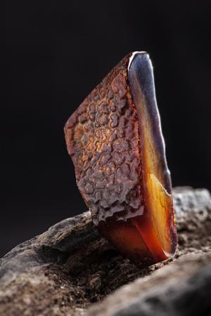 Natürlicher Bernstein. Ein Stück dunkelroter halbtransparenter Naturbernstein auf einem Stück steinernem Holz.