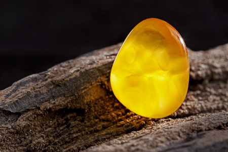 Natural amber. A piece of yellow opaque natural amber on large piece of dark stoned wood.