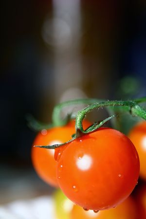 Tomatos with a water drops