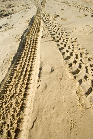 deutschemarks: tractors track on the beach