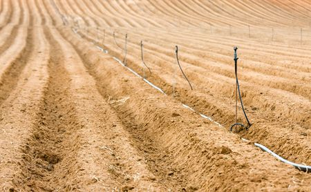 sprinkling: lines of field. rural scenery, sprinkling system Stock Photo