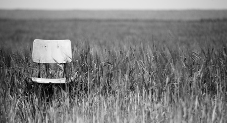 black and white picture of office chair abandoned at the wheat field, focus on chair Stock Photo