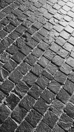 parallelism: Black and white image of the bricks of footway