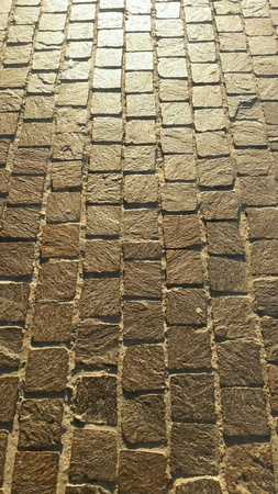 parallelism: Color image of the bricks of footway