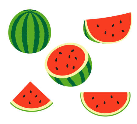 Fresh and juicy whole watermelons and slices. Vetores