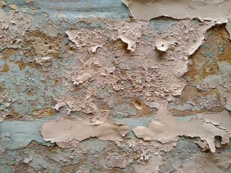 Rough wall background. Grunge paint stone backdrop. Aged crack texture background in pale pink and green blue. Stock Photo