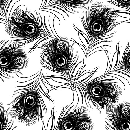 seamless pattern with black peacock feathers illustration