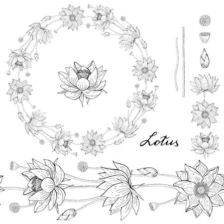 Corona en blanco y negro y pincel sin costuras de flor de loto, borde de decoración floral redondo, elementos de diseño botánico