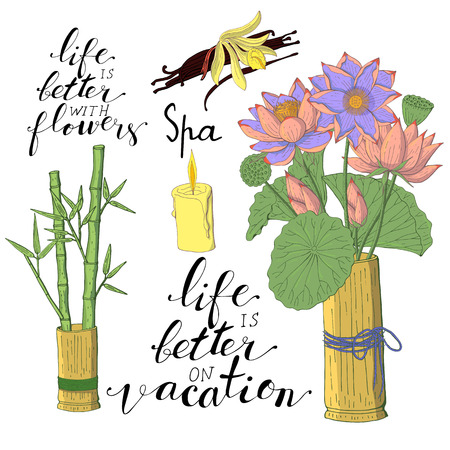 Hand lettering phrases life is better with flowers, life is better on vacation in black, bamboo leaves and lotus flowers inside vase, vanilla orchid flower and pods, isolated on white background Banque d'images - 116251162