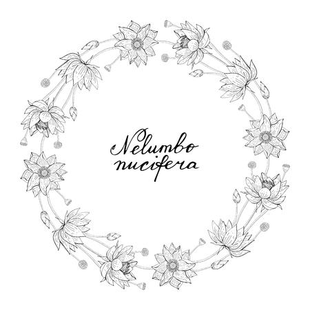 black and white Wreath from lotus flower, floral round decoration border, botanical design element Illustration