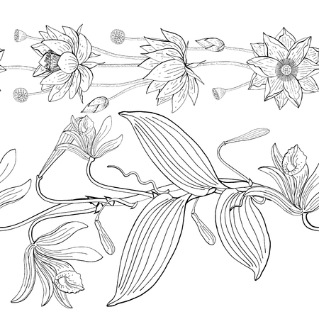 seamless brush from lotus and vanilla vanilla, orchid flowers, floral design element Illustration