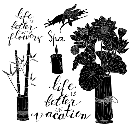 Hand lettering phrases life is better with flowers, life is better on vacation in black, bamboo leaves and lotus flowers inside vase, vanilla orchid flower and pods, isolated on white background