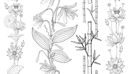 seamless brush from orchid and lotus flowers, bamboo, floral design elements Banque d'images - 124518684