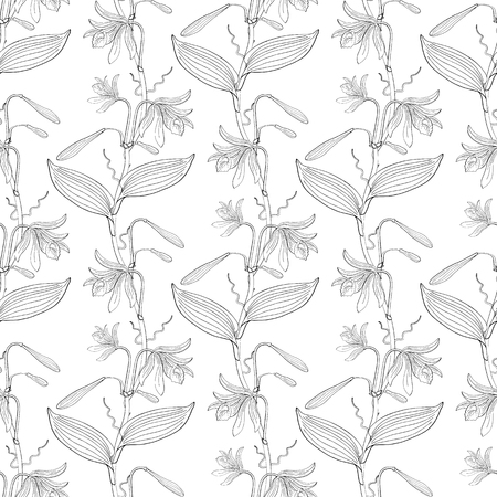 seamless floral pattern with orchid flowers on white background