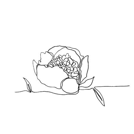 Fleur de pivoine minimaliste dessinée à la main, un seul dessin simple de ligne noire continue. isolé sur fond blanc. Illustration vectorielle stock.