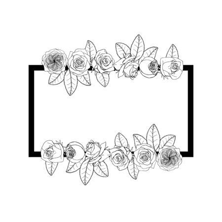 Hand drawn doodle style rose flowers border and frame. floral design element. isolated on white background. stock vector illustration