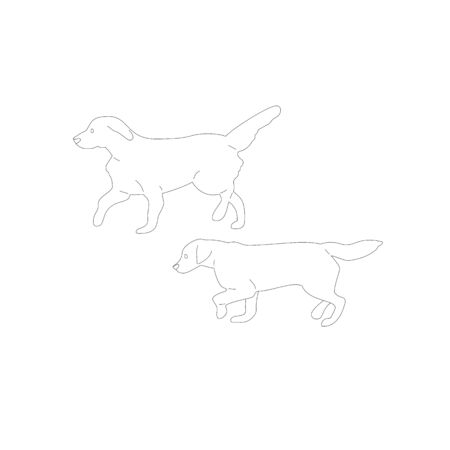 Set of two walking labrador retriever dogs. Isolated on white background. Flat style cartoon stock vector