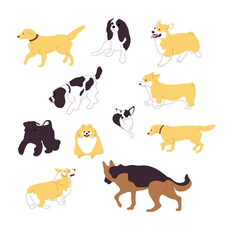 Set of multiple breed walking and sitting dogs. Isolated on white background. Flat style cartoon stock vector illustration..