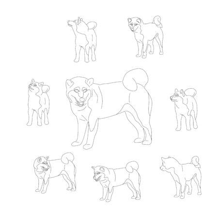 Set of shiba inu dogs. Isolated on white background. Flat style monochrome black and white cartoon stock vector illustration. Illustration