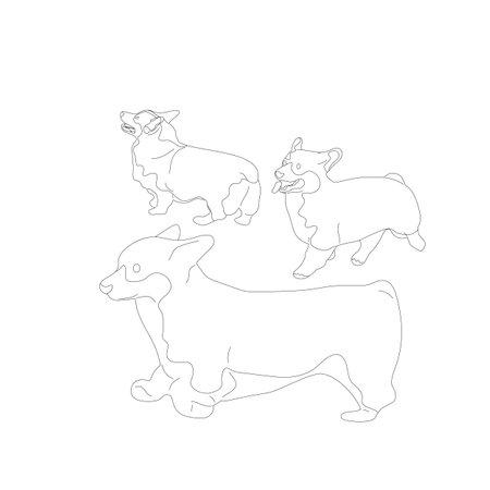 Set of corgi dogs. Isolated on white background. Flat style cartoon stock vector illustration.. Stock Vector - 133514519