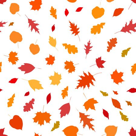 Colorful seamless pattern with autumn leaves on white background, stock vector illustration. Standard-Bild - 137050715